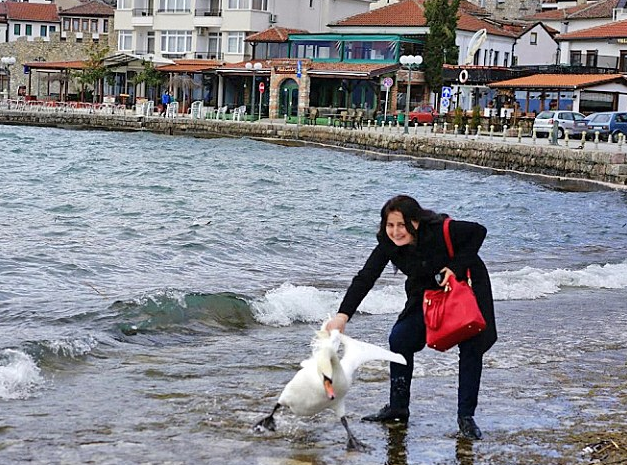 Woman Roughly Drags Swan Out Of Water By The Wing For Selfie