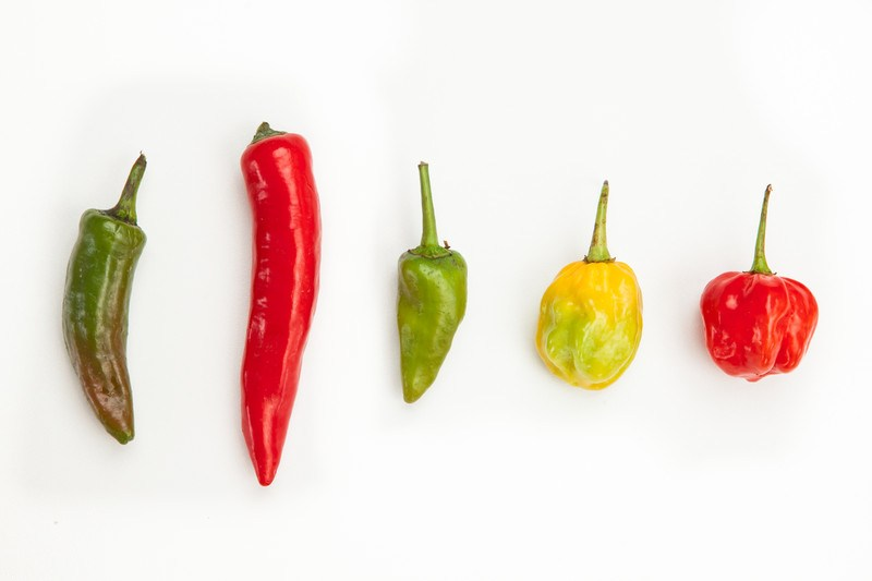The Psychological Reason Why People Hate Spicy Foods