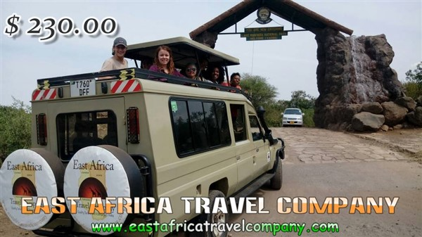 JOIN Group:  Tanzania wildlife adventures