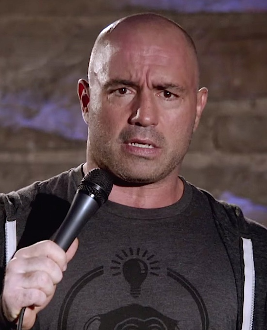 "UFC Media Star Joe Rogan Questions Faith and Asks ""Are You in a Cult""?"